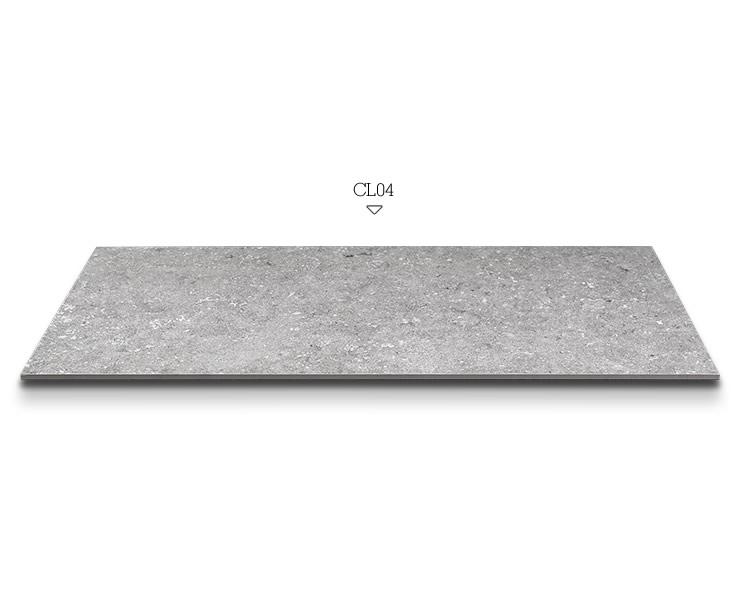 1557759052-Corallite-model-2